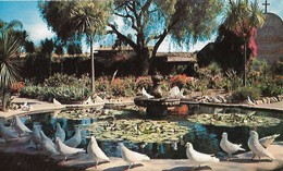 CARTE POSTALE ORIGINALE DE 9CM/14CM : SANTA ANA OLD MISSION SAN JUAN CAPISTRANO A FONTAIN OF PIGEONS  CALIFORNIA  USA - Santa Ana