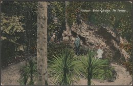 The Fernery, Winter Gardens, Falmouth, Cornwall, 1908 - Argall's Postcard - Falmouth