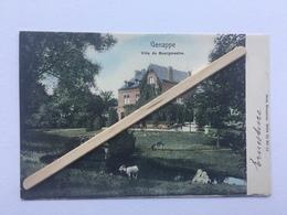 GENAPPE» VILLA DU BOURGMESTRE «Panorama Couleur ,animée,chèvre ,cheval,âne (1903)NELS .Serie 76 / Nº 11. - Genappe