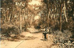 Cpa Forêt De LA GRANDE COTE 17 - La Voie Du Tram Forestier Allant Jusqu'au Phare De La Coubre - Bergevin 9320 Ramuntcho - Saint-Palais-sur-Mer