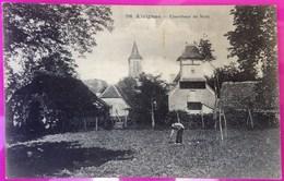 Cpa Alvignac Chercheur De Noix Rare Carte Postale 46 Lot Proche Miers Rignac Gramat - Frankreich