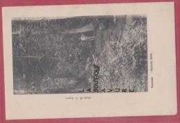 GUYANE---Grand Bois----animé--precurseur - Cayenne