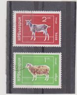 BULGARIE    1974  Y.T. N° 2071  à  2076  Incomplet  Oblitéré - Gebraucht