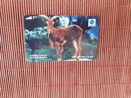 Phonecard Animal Indonesia  Used Rare - Indonesia