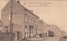 BLAESVELT / WILLEBROEK / MECHELSE STEENWEG / RUBENSZAAL - Willebroek