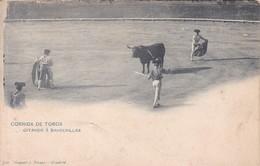 CORRIDA DE TOROS. CITANDO A BANDERILLAS. HAUSER Y MENET, MADRID CIRCA 1900's ESPAÑA- BLEUP - Corrida