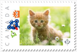 KITTEN IN GRASS : GATTO, GATTINO, CHAT, CHOTON, GATO, GATITO, KATZO, Kätzchen MNH Postage Stamp Canada 2018 P18-06sn12 - Katten