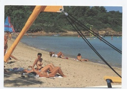 83 --ILE DE PORQUEROLLES --plage De La Courtade  (femmes Aux Seins Nus) -RECTO / VERSO-B17 - Porquerolles