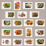 HEDGEHOG, ERIZO, RICCIO, IGEL, Hérisson MNH Stamps LIMITED! ONLY 2 Collection Available! ONLY HERE! Canada 2014-2015 - Rodents