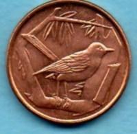 (r65)  CAYMAN ISLANDS  1 Cent 1972 - Cayman Islands