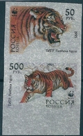 B1714 Russia Rossija Fauna Animal Tiger Pair Colour Proof - Errors & Oddities