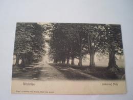 Westerloo - Westerlo // Lindedreef Abby// Gelopen 1906 Uitg. J.Geerts - Van Houdt - Hotel Des Anker - Westerlo