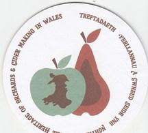 UNUSED BEERMAT - WELSH ORCHARDS & CIDER MAKING (WALES) - Bierviltjes