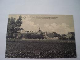 Hoogstraten - Hoogstraeten // Algemeen Zicht Weldadigheidskolonie -Vue De Ensemble Colonie De Bienfaisance // 19?? - Hoogstraten