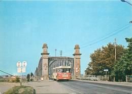 D1355 Slatina Bridge Bus 1970s - Roumanie