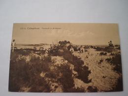 Kalmthout - Calmpthout // Vermaak In De Duinen (geanimeerd) Gelopen 1930 - Kalmthout