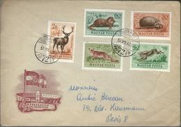 Belle Lettre De HONGRIE Du  3/12/53   Pour PARIS - Marcophilie (Lettres)