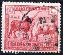 CONGO BELGA, BELGIAN CONGO, COLONIA BELGA, USI E COSTUMI, 1925, FRANCOBOLLO USATO Michel 87   Scott 113 - Congo Belga
