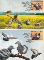 India  2010   Pigeion & Sparrow  2  Max  Cards #  13358    D  Inde Indien - Sparrows