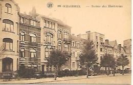 CPA / AK / PK  -  SCHAERBEEK  Avenue Des Hortensias - Schaarbeek - Schaerbeek
