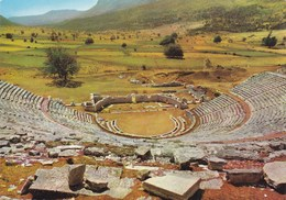 IOANNINA - Théatre Grec Antique De Dodone (Dodoni) - - Grecia
