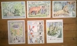 Lot De 8 Cartes Postales CONTES & FABLES Illustratrice Monique TOUVAY - Vertellingen, Fabels & Legenden