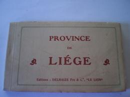 Province De Liege // Carnet - Boekje Ed Delhaize Frs & Co - Le Lion // Complet 20 Cartes // Rare - België