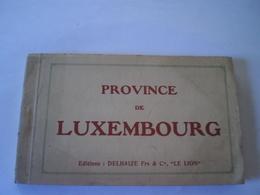 Province De Luxembourg (Belgique) // Carnet - Boekje Ed Delhaize Frs & Co - Le Lion // Complet 20 Cartes // Rare - België