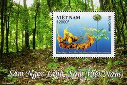 Vietnam - 2017 - Vietnamese Ginseng - Panax Vietnamensis - Mint Souvenir Sheet - Vietnam