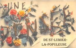 51 - MARNE / Fantaisie Moderne - CPM - Format 9 X 14 Cm - 515358 - Saint Lumier La Populeuse - France