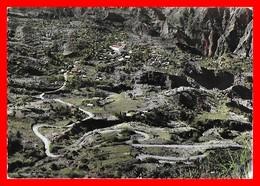 CPSM/gf  LA REUNION.  CILAOS.  Palmiste Rouge...A635 - La Réunion