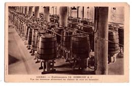 1908 - Cognac - Etablissements J.A. Hennessy & Cie - Vue Des Tonneaux Alimentants Les Ateliers De Mise En Bouteille - - Vines