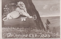 Belfort - On Ne Passe Pas ( Lion Clef ) - Galerie Patriotique N° 32 - Belfort – Siège De Belfort