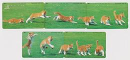 PUZZLE De 5 Télécartes Japon / 110-011 - ANIMAL - CHAT Chats - CAT Cats Japan Phonecards - KATZE Katzen - 4554 - Gatos