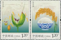 Ref. 310608 * NEW *  - CHINA. People's Republic . 2013. ARROZ - 1949 - ... République Populaire