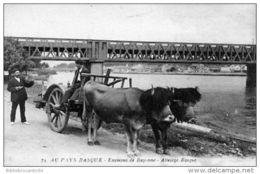 D64- ENVIRONS DE BAYONNE < ATTELAGE BASQUE Et PONT DE CHEMIN DE FER SUR LA NIVE - Bayonne