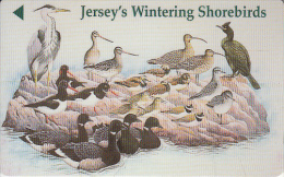 "JERSEY ISL. - Jersey""s Wintering ShoreBirds, CN : 46JERM(normal 0), Used - Royaume-Uni"