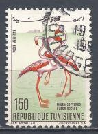 Tunesia 1966. Scott #C29 (U) Birds, Pink Flamingoes * - Tunisie (1956-...)