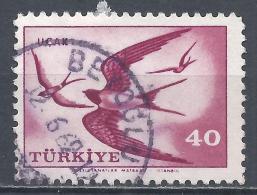 Turkey 1959. Scott #C31 (U) Swallows, Bird * - 1921-... République