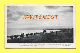 CPA Cartolina Poetica, Versi Di Ada Negri 1930  VG AUTENTICA 100% - Schrijvers