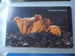 ANDORRA USED CARDS PLANTS MUSHROOM - Andorra