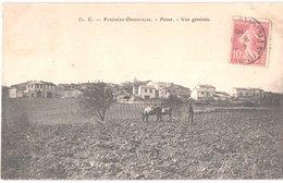 FR66 PASSA - Brun 51 C - Vue Générale - Scène De La Bour - Animée - Belle - France