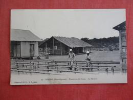 N' KOGO PLANTATION DE CACAO . LE SECHOIR   Ref 3005 - Gabon