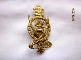 Insigne De La Garde Impériale éthiopienne (kebour Zabagna), époque De Haile Selassie - Landmacht