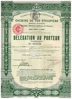 Action Ancienne - Compagnie Impériale Des Chemins De Fer Ethiopiens - Bon De Délégation De 1910 - Chemin De Fer & Tramway
