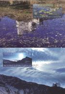 Liechtenstein 1606/07 Auf 2 Maximumkarten - Maximumkarten (MC)