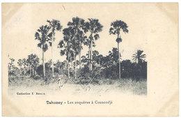 Cpa Afrique, Dahomey - Les Coquères à Cococodji - Dahomey