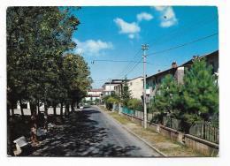 CASTELFRANCO DI SOPRA - VIALE TRENTO E TRIESTE  - VIAGGIATA FG - Arezzo