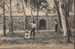 Mercier Lacombe ( Algérie)  Paysage Autour De La Source, Semeuse Camée 10 Ct Rouge 1911 - Algérie