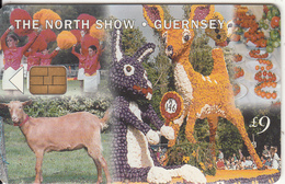 GUERNSEY ISL. - The North Show, Used - United Kingdom